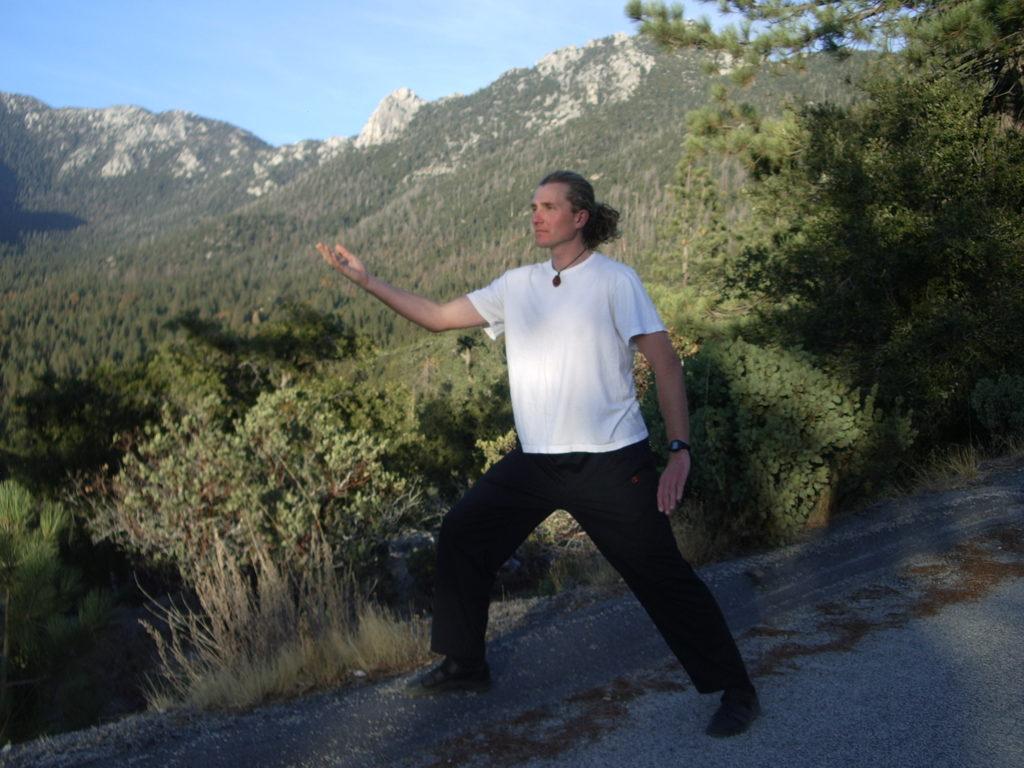 qigong, joga, tomek nowakowski, pchające dłonie